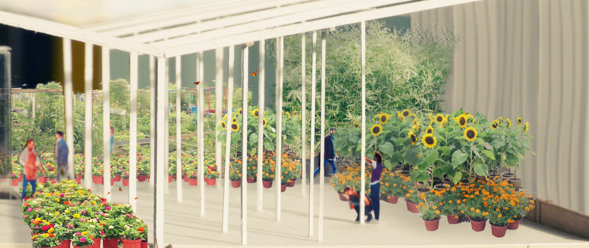 greenhouse render copy